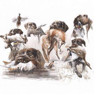 Мисливські собаки